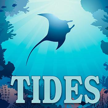 TIDES 1x1